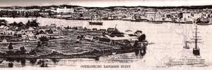 Chapter 2 1880 Brisbane