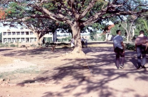 1968 Bangalore Lowry Mem HS