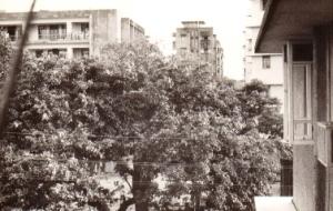 1968 Bombay Apt